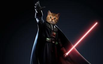 darthvadercat