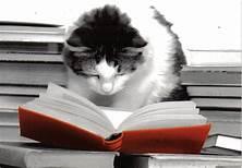 BooksCat